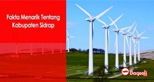 Fakta Menarik Tentang Kabupaten Sidrap