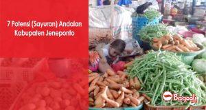 7 Potensi (Sayuran) Andalan Kabupaten Jeneponto